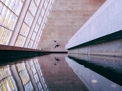 Il movimento #Empty su Instagram: la bellezza dei musei catturata a porte chiuse